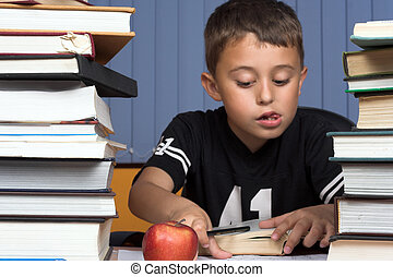 schoolboy - A young schoolboy write his homework