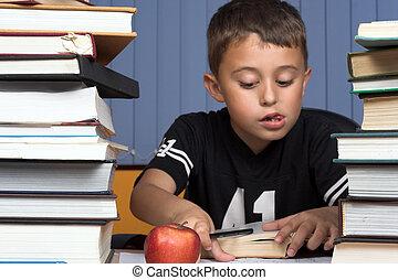 schoolboy - A young schoolboy write his  homework