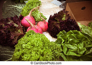 organic food on the market, radish and lettuce