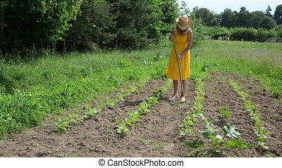 lady hoe grub weeds - Barefoot gardener lady in yellow dress...