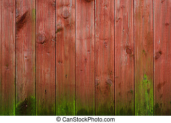 Moss growing on wood background - Moss growing on wood...