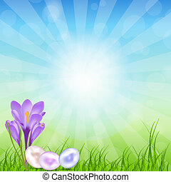 Easter eggs card with colourful eggs vector illustration