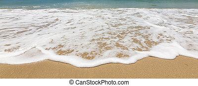 Waves on a tropical beach