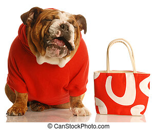 dog laughing with purse - spoiled dog spending owners money...