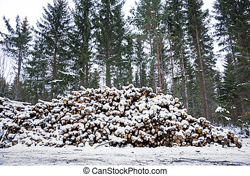 Pile of timber - Piles of timber by Swedish dirt road...