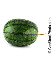 watermelon on white background - The Focus watermelon on...