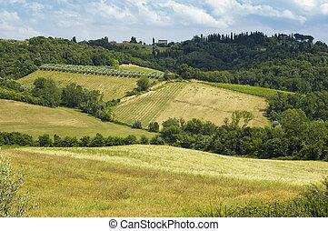 Chianti Landscape - Tuscany - Landscape in Chianti...