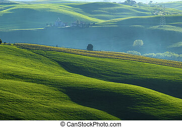 Sunlit fields - Rural countryside landscape in Tuscany...