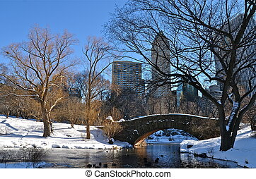 New York City at Gapstow bridge in winter, Central Park NYC...