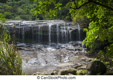 Waterfall in Tropical Rainforest - Waterfall in a Tropical...