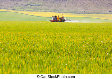 Crop sprayer in a field - A tractor sprays a field of crops...