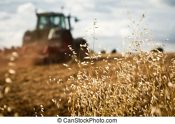 Tractor ploughing field - Close-up of crop with Tractor...