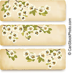 Three retro spring banners with blossoming tree brunch with...