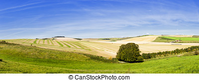 Panoramic Rolling Farmland - Panoramic view of rolling...