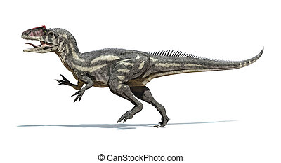 Photorealistic and scientifically correct 3 D rendering of an Allosaurus dinosaur.. Viewed from a side, while walking. On white background with drop shadow. Clipping path included.