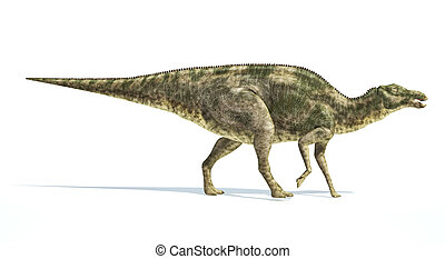 Maiasaura dinosaur, photorealistic representation Side view...