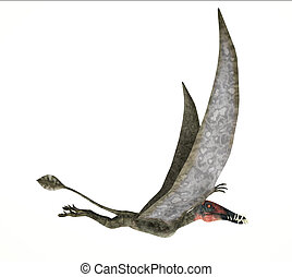 Dorygnathus flying Dinosaur photorealistic and scientifically correct representation, side view. On white background. Clipping path included.