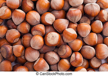 group of hazelnuts in husks close up