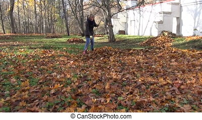gardener pile rake leaves - yard is covered with dry fallen...