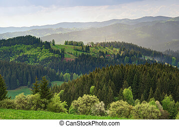 Green highland hills countryside with meadows and forests