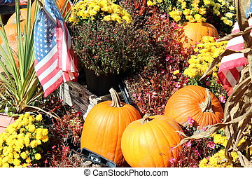 fall display - bright orange pumpkins, colorful yellow mums...