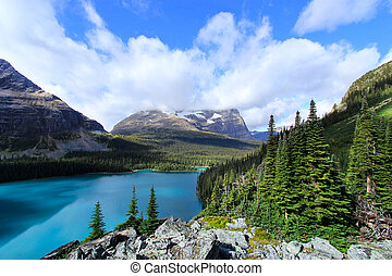 Lake OHara, Yoho National Park, British Columbia, Canada