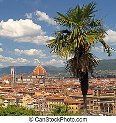 view of Florence with palm tree at