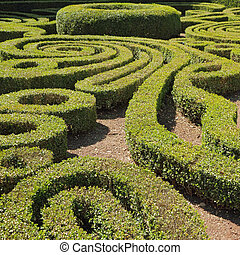 ornamental cut boxwood garden in Bagnaia, Villa Lante,...