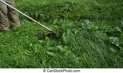 trimmer tool cut grass - Turn scene of gardener cut meadow...