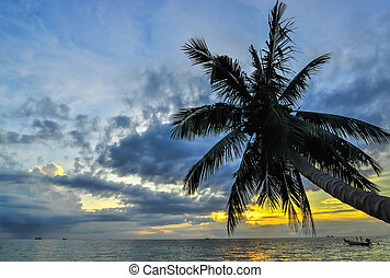 Coconut palms on sand beach in tropic on sunset. Thailand, Koh Chang, Klong Prao beach   , Asia.