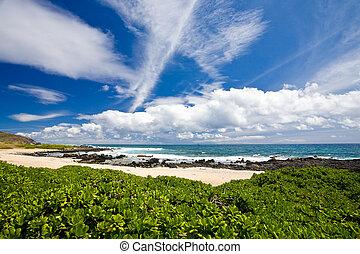Beach Scenic