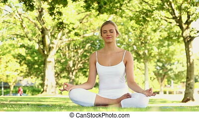Calm blonde doing yoga in the park on a sunny day