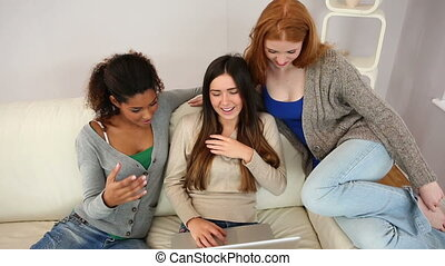 Amused young women using notebook sitting on couch in living...