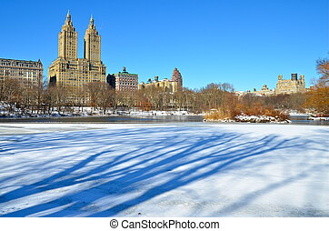 Winter in Central Park. New York.
