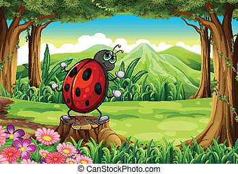 A ladybug at the forest standing above the stump -...