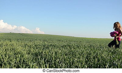 wide corn field woman - blue sky background over a wide...