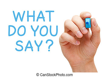 What Do You Say - Hand writing What Do You Say with blue...