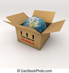 The Fragile Earth in a Cardboard Box