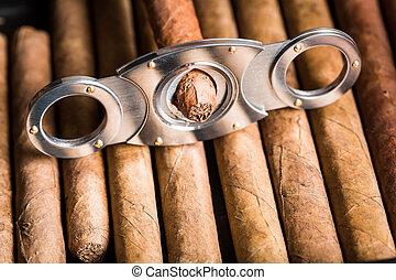Closeup of cutting off cigar tip