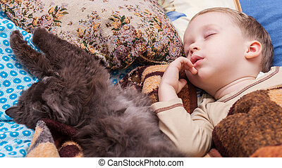 Boy sleeps with cat - Young boy and cat sleeping on bed at...