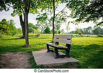 Park Bench in Nature Area