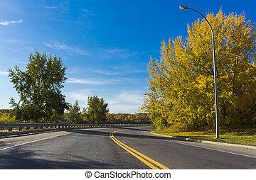 otoño, escénico, camino