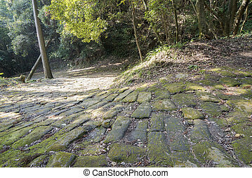 Historic cobbled - Forest and historic mossy winding cobbled...