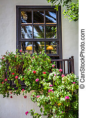 brown window - colorful window with green and red geranium...