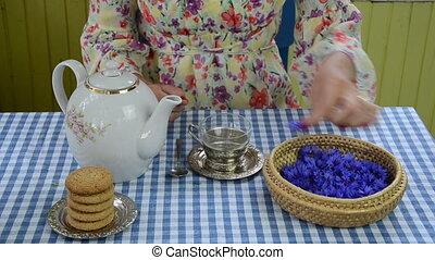 hand cornflower tea - woman hand put bluet bluebottle flower...