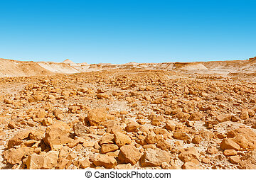 Stone Desert on the West Bank of the Jordan River