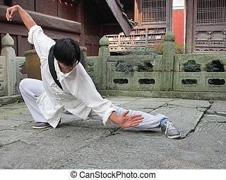Tai Chi Man - TaiChi