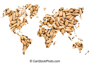 World Map Wheat Grains Isolated On White