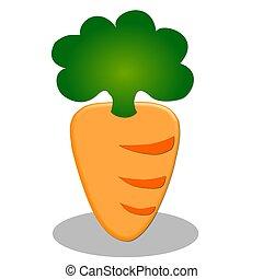illustration of carrot on white