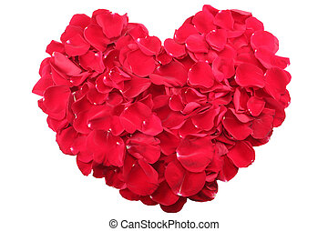 Heart shape of petals isolated.  Valentines Day concept.